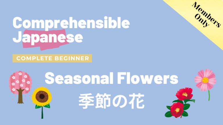 季節の花 Seasonal Flowers